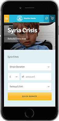 Donations website mobile example view