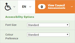 Accessibility website option screenshot